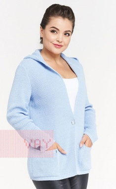 Jumpers, cardigans, blazers Newvay 182-1568 gol